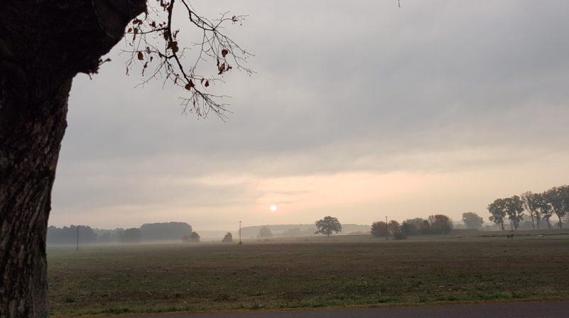 Sonne-Rauhnacht-e1542920606679.jpg